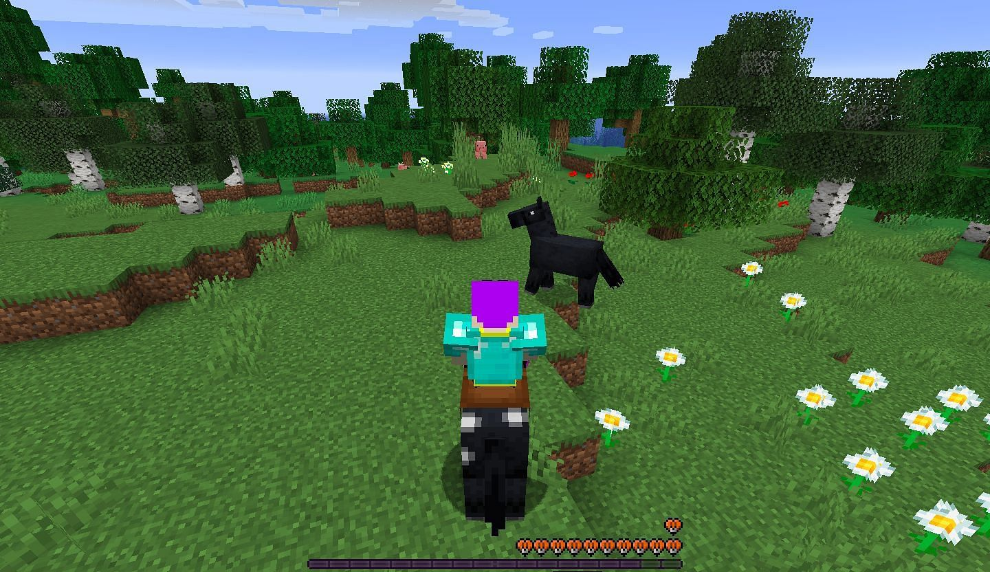Ranking rideable mobs in Minecraft