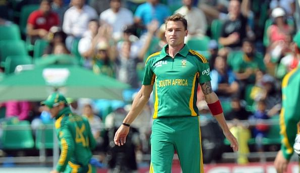 Image result for dale steyn body