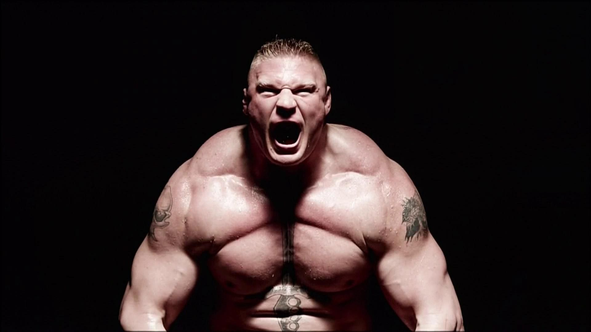 Elimination Chamber 2014: 5 possible showdowns Brock Lesnar could have in the main event
