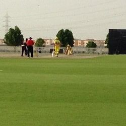 Chennai Super Kings defeat Kolkata Knight Riders in a practice game at Abu Dhabi