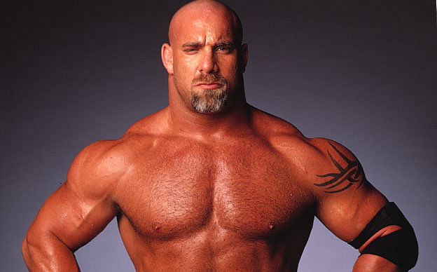 Bill Goldberg earned a  million dollar salary - leaving the net worth at 14 million in 2017