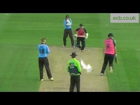Video: Batsman goes for a six in Natwest T20, hits a seagull instead!