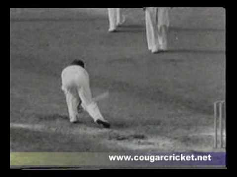 Video: The law of averages - Don Bradman out for a duck in his last innings