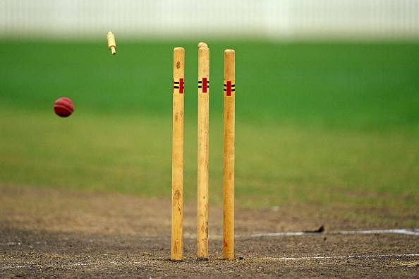 cricket bat wallpaper