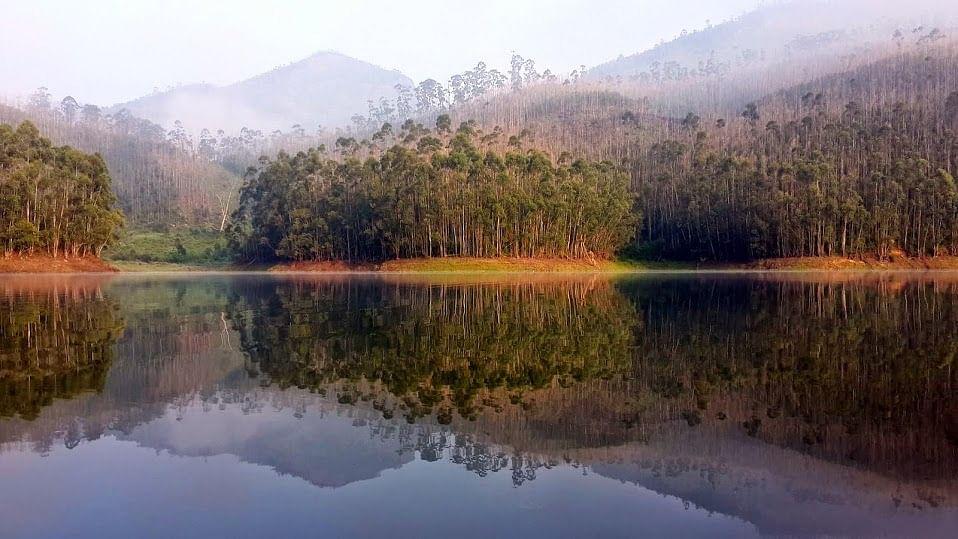 A day nn my hill running journey at Munnar