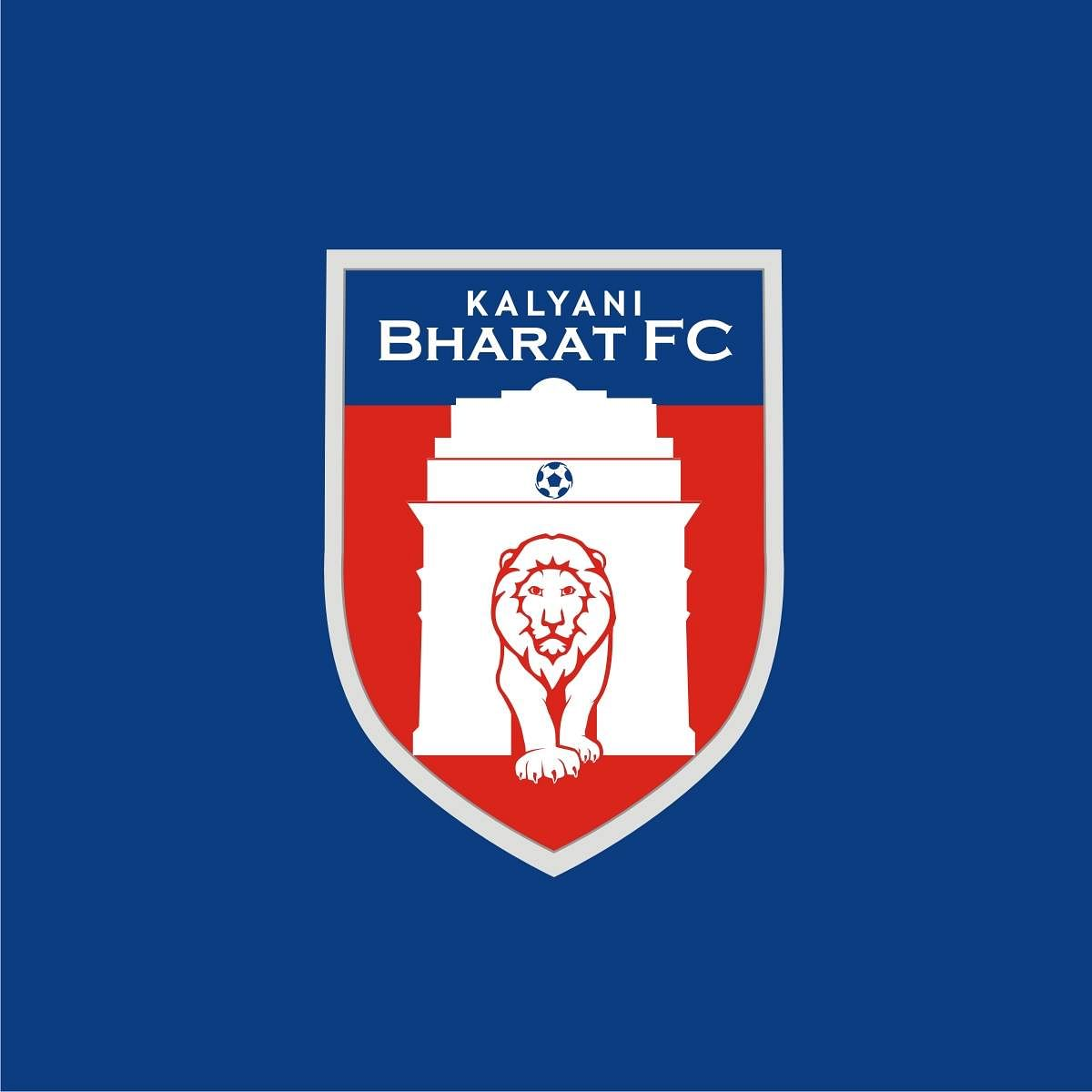 Bharat FC: The lion that wandered straight to the zoo