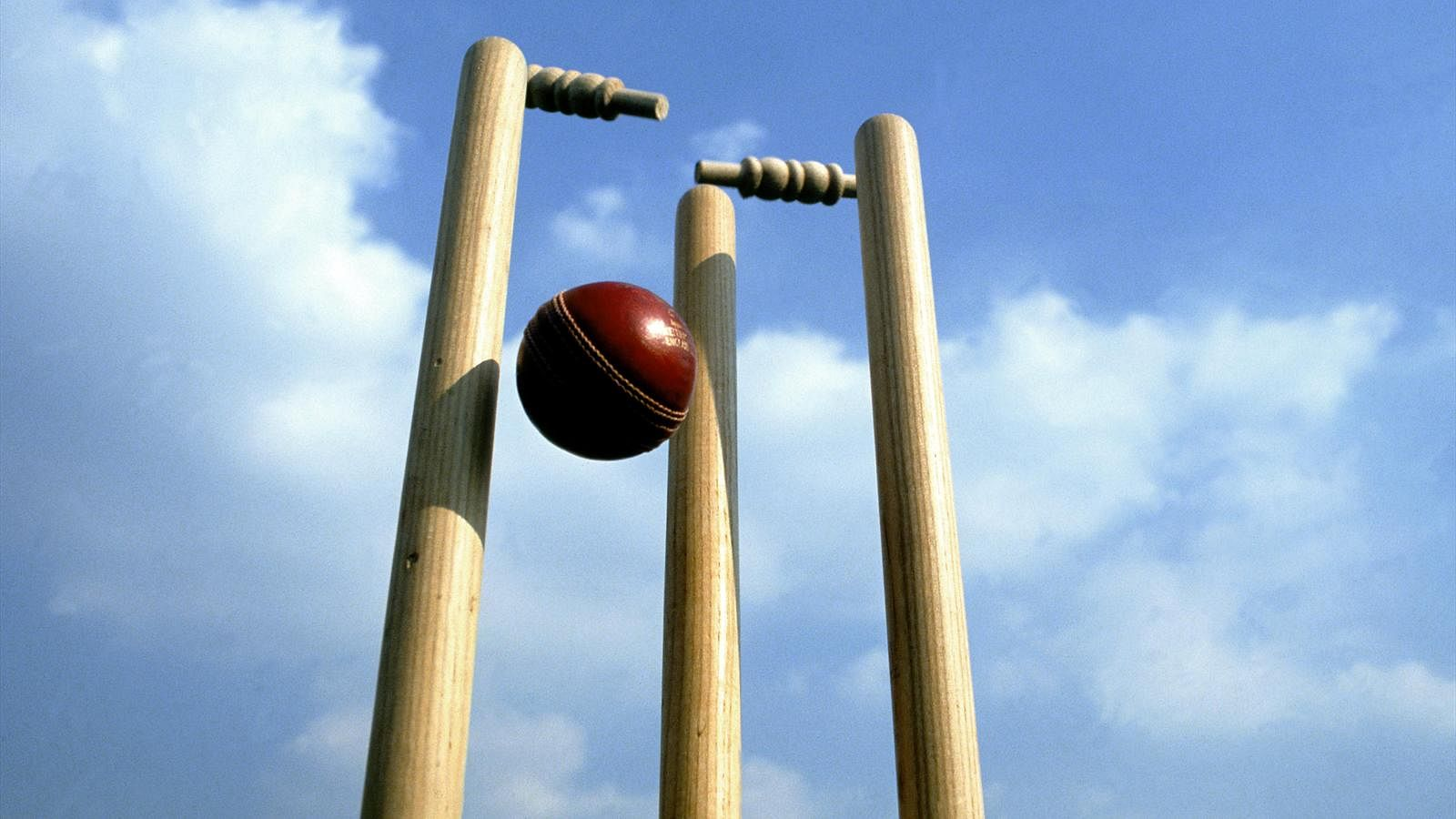 Interview with cricket wickets