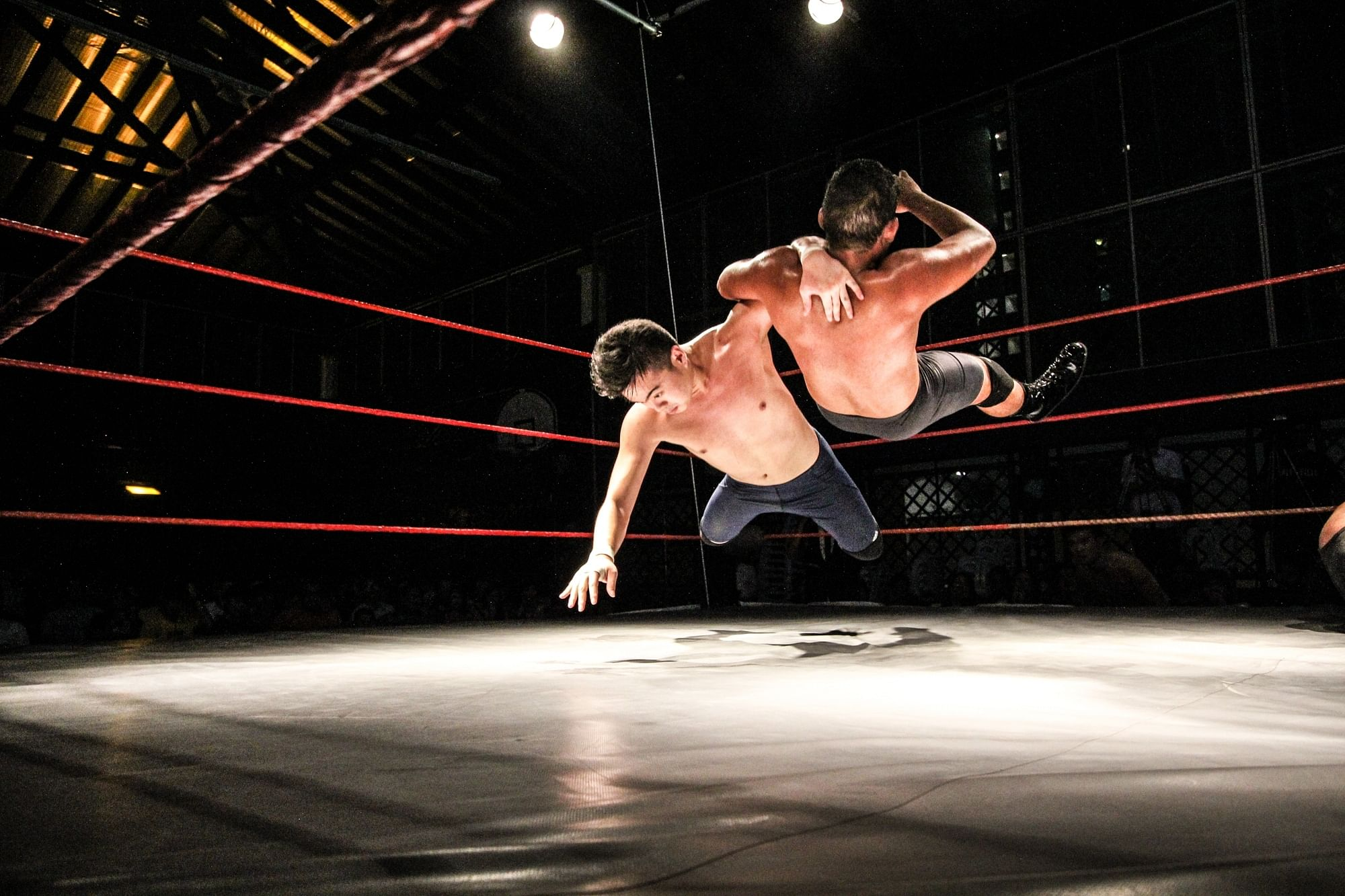 2014: The year of independents and pro wrestling