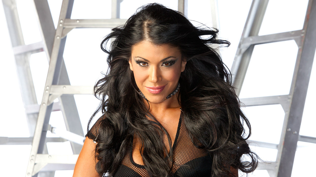 Rosa Mendes earned a  million dollar salary, leaving the net worth at 0.2 million in 2017