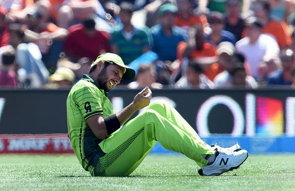 Pakistan will bounce back in the ICC Cricket World Cup
