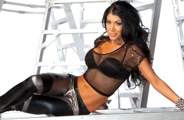 CM Punk makes an appearance, WWE Diva Rosa Mendes is back, Randy Orton grants wish