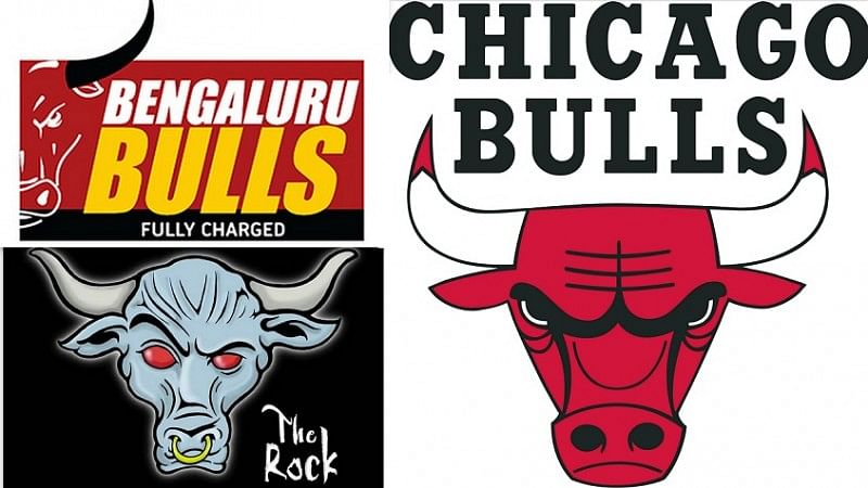 Which Bulls logo is most worthy: Bengaluru Bulls, Chicago Bulls, or Rock's Brahma Bull?