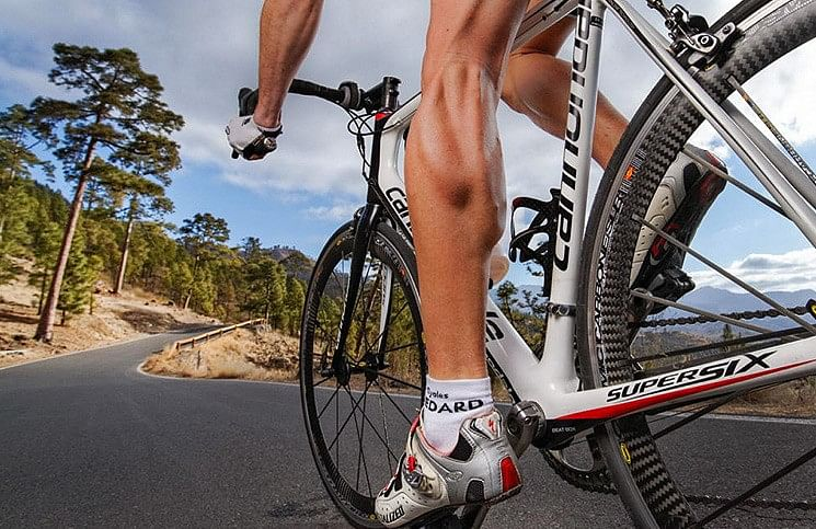 How many calories do you burn while cycling?