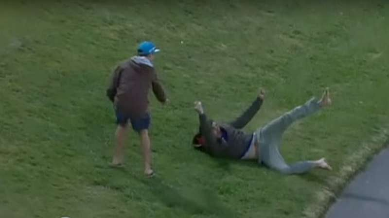 Watch: Spectator wins $4,000 for taking incredible diving catch in New Zealand